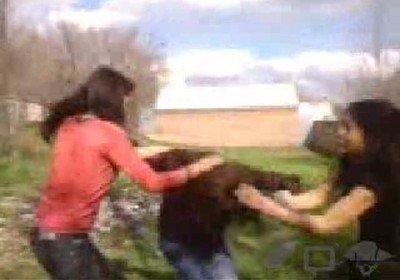 Студенты издеваются над девушкой