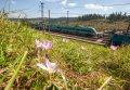 Испытания дизель-поезда ДПКр2-001. Фото пресс-службы ПАО «КВСЗ»