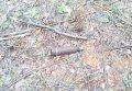 В Кременчугском районе возле железной дороги обнаружили боеприпасы (фото)