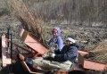 В Полтавской области высажено уже 450 га леса