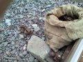 На Полтавщине несовершеннолетний демонтировал железнодорожную колею