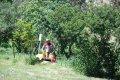 КП «Благоустройство Кременчуга» продолжает работы по покосу травы
