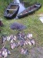 В Кобелякском районе работники ГАИ задержали браконьера