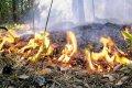 Кременчугские спасатели предупреждают о пожарной опасности