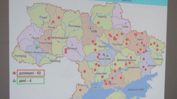 Статистика АЧС. Фото пресс-службы Полтавской ОГА
