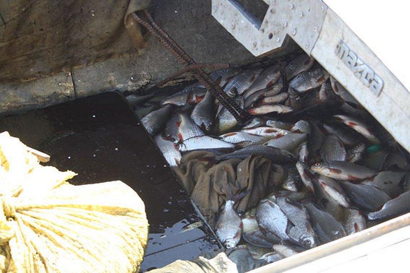 запрет на рыбалку с лодки в татарстане