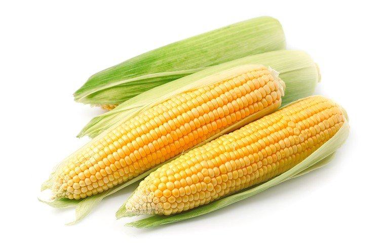 Бизнес-идея: Производство консервированной кукурузы