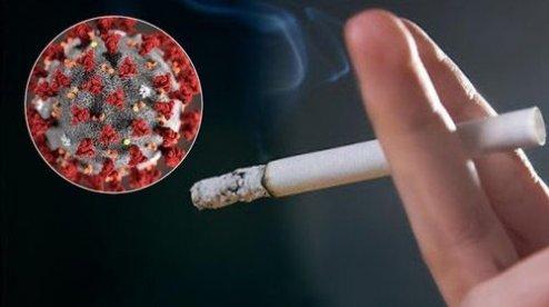 Употреблять табачные изделия электронные сигареты на 400 затяжек оптом